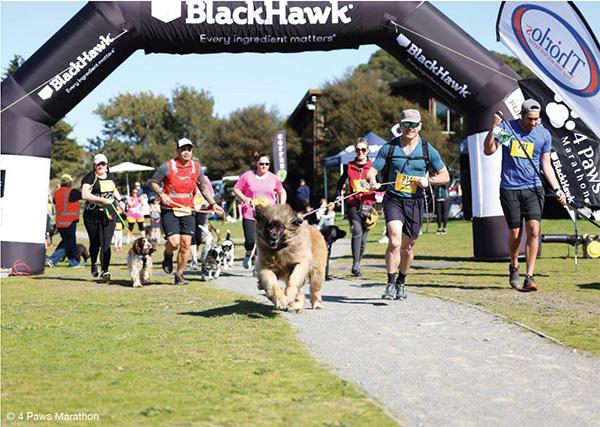 4 Paws Marathon